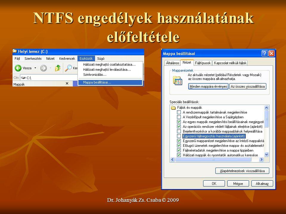 Dr. Johanyák Zs. Csaba © 2009 NTFS engedélyek használatának előfeltétele