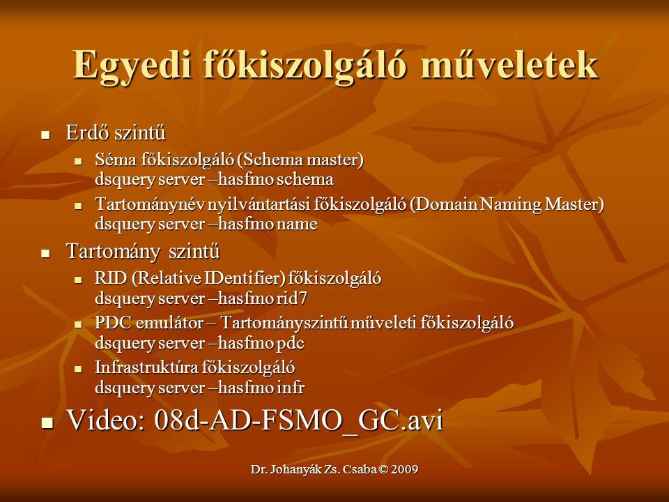 Dr. Johanyák Zs. Csaba © 2009 Egyedi főkiszolgáló műveletek Erdő szintű Erdő szintű Séma főkiszolgáló (Schema master) dsquery server –hasfmo schema Sé