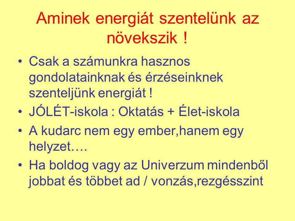 Aminek energiát szentelünk az növekszik .