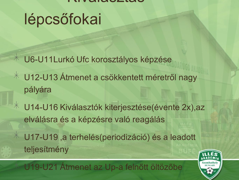 Kiválasztás lépcsőfokai U6-U11Lurkó Ufc korosztályos képzése U12-U13 Átmenet a csökkentett méretről nagy pályára U14-U16 Kiválasztók kiterjesztése(évente 2x),az elválásra és a képzésre való reagálás U17-U19,a terhelés(periodizáció) és a leadott teljesítmény U19-U21 Átmenet az Up-a felnőtt öltözőbe