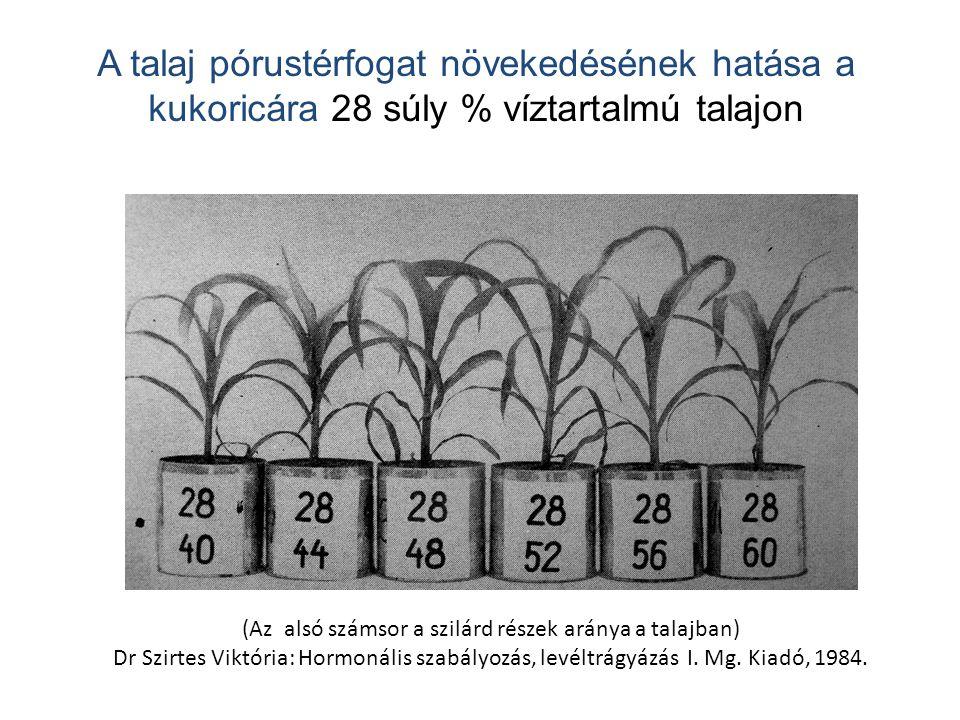 (Az alsó számsor a szilárd részek aránya a talajban) Dr Szirtes Viktória: Hormonális szabályozás, levéltrágyázás I. Mg. Kiadó, 1984. A talaj pórustérf