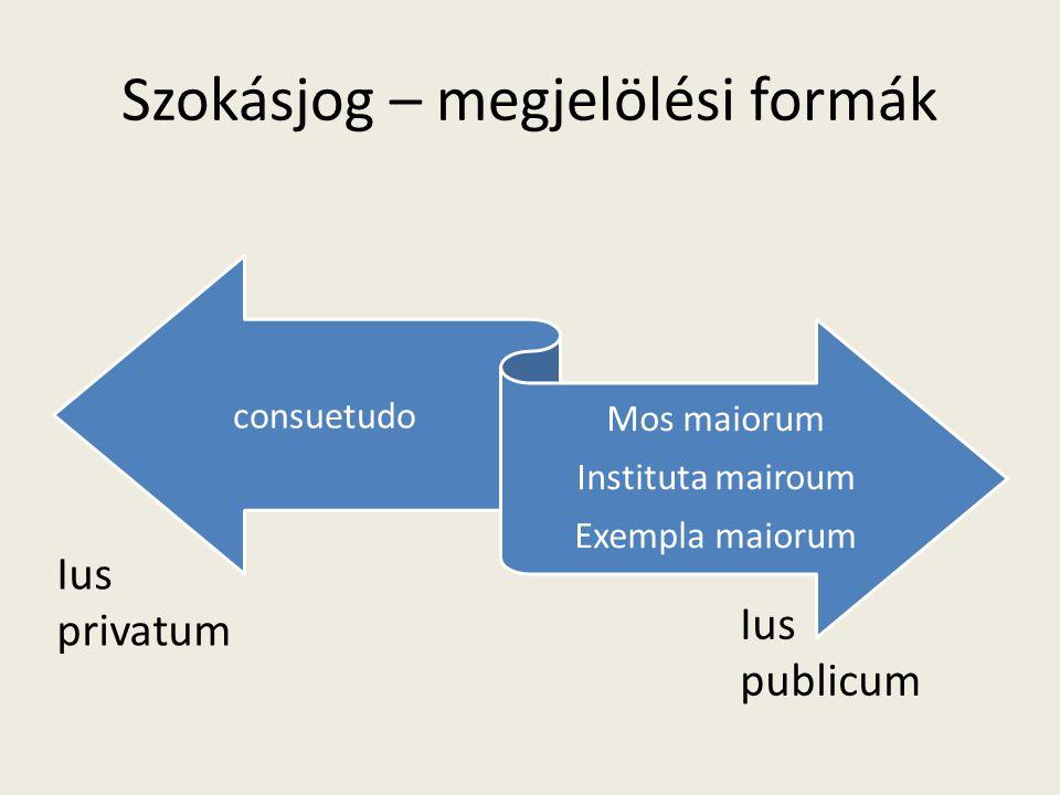 Szokásjog – megjelölési formák consuetudo Mos maiorum Instituta mairoum Exempla maiorum Ius privatum Ius publicum