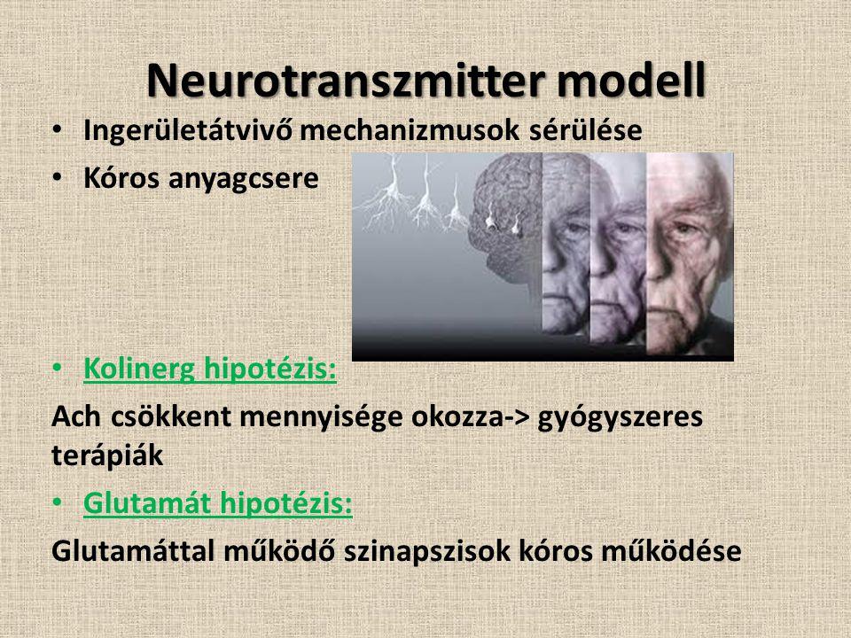 Neurotranszmitter modell Ingerületátvivő mechanizmusok sérülése Kóros anyagcsere Kolinerg hipotézis: Ach csökkent mennyisége okozza-> gyógyszeres terápiák Glutamát hipotézis: Glutamáttal működő szinapszisok kóros működése