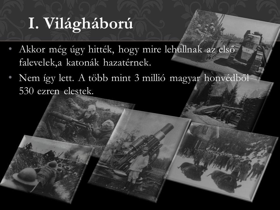 Akkor még úgy hitték, hogy mire lehullnak az első falevelek,a katonák hazatérnek. Nem így lett. A több mint 3 millió magyar honvédből 530 ezren eleste