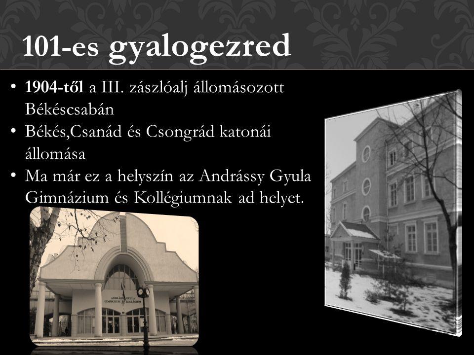 101-es gyalogezred 1904-től a III. zászlóalj állomásozott Békéscsabán Békés,Csanád és Csongrád katonái állomása Ma már ez a helyszín az Andrássy Gyula