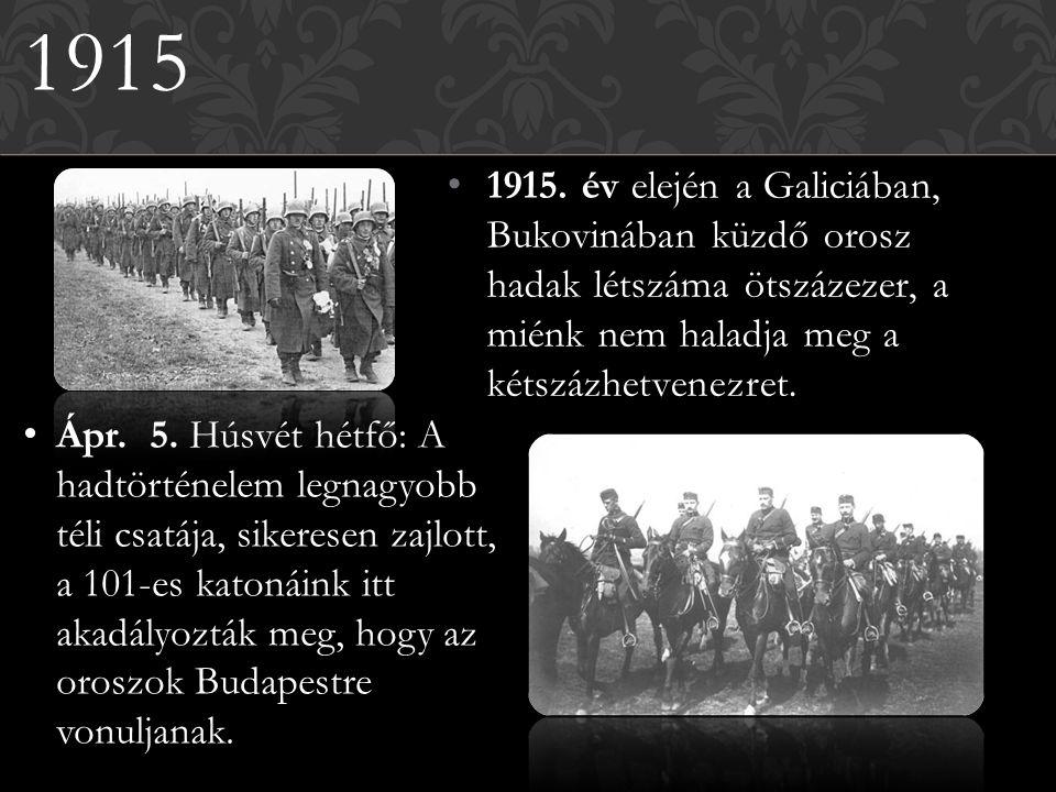 1915. év elején a Galiciában, Bukovinában küzdő orosz hadak létszáma ötszázezer, a miénk nem haladja meg a kétszázhetvenezret. 1915 Ápr. 5. Húsvét hét