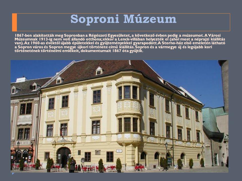 Soproni Múzeum 1867-ben alakították meg Sopronban a Régészeti Egyesületet, a következő évben pedig a múzeumot. A Városi Múzeumnak 1913-ig nem volt áll