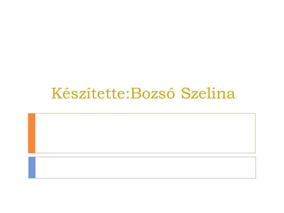 Készítette:Bozsó Szelina