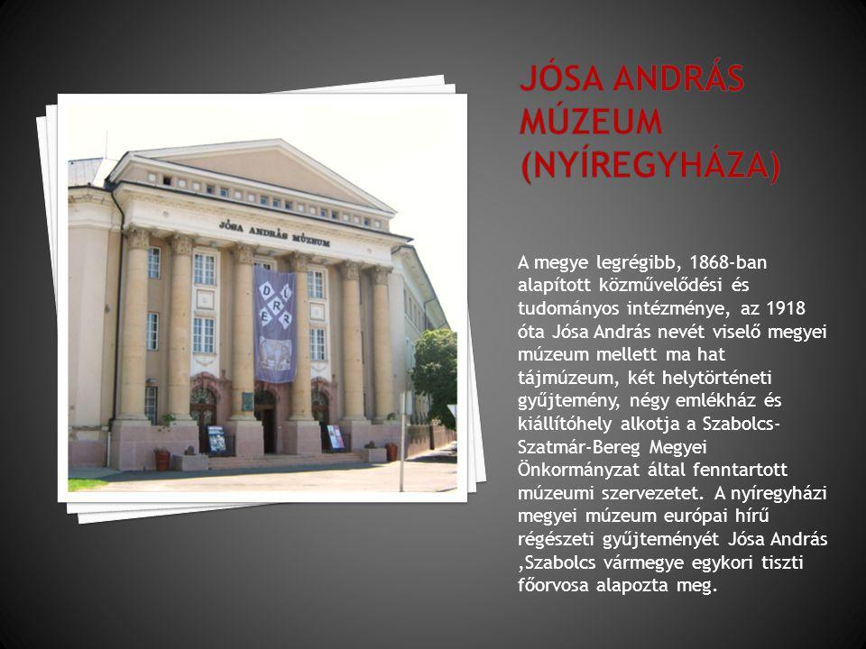 A megye legrégibb, 1868-ban alapított közművelődési és tudományos intézménye, az 1918 óta Jósa András nevét viselő megyei múzeum mellett ma hat tájmúz