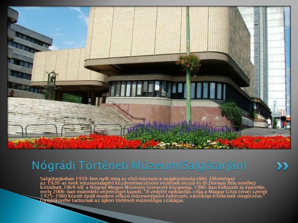 Salgótarjánban 1959-ben nyílt meg az első múzeum a nagyközönség előtt. Előzményei az 1920-as évek múzeumalapító kezdeményezéseire vezetnek vissza és d