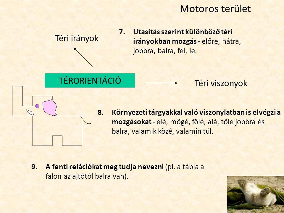 Motoros terület Téri irányok Téri viszonyok 8.Környezeti tárgyakkal való viszonylatban is elvégzi a mozgásokat - elé, mögé, fölé, alá, tőle jobbra és