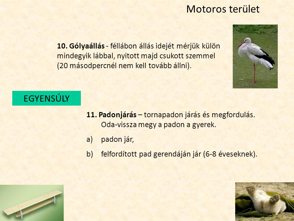 Motoros terület EGYENSÚLY 10. Gólyaállás - féllábon állás idejét mérjük külön mindegyik lábbal, nyitott majd csukott szemmel (20 másodpercnél nem kell