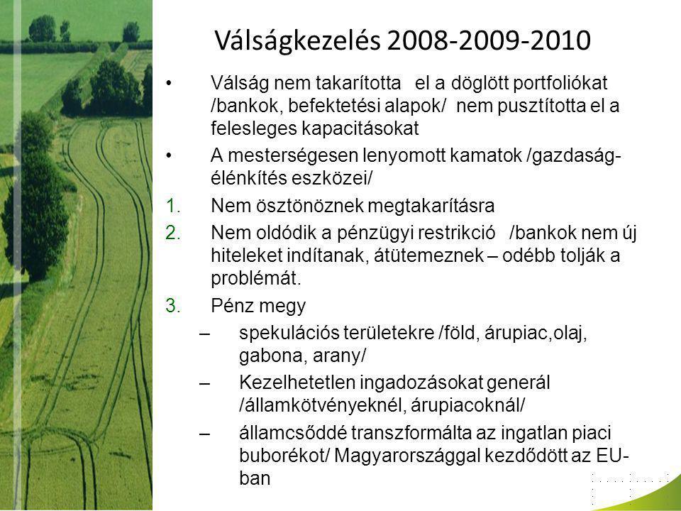 Válságkezelés 2008-2009-2010 Összegzés Kérész életű sikerek – nincs vége a válságnak /10 évig tart/ Új válságkezelési szakasz - állami restrikcióval /?.