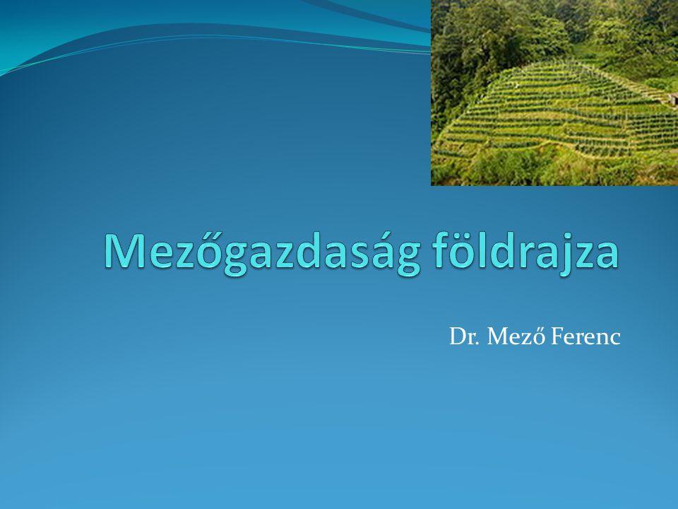 Dr. Mező Ferenc