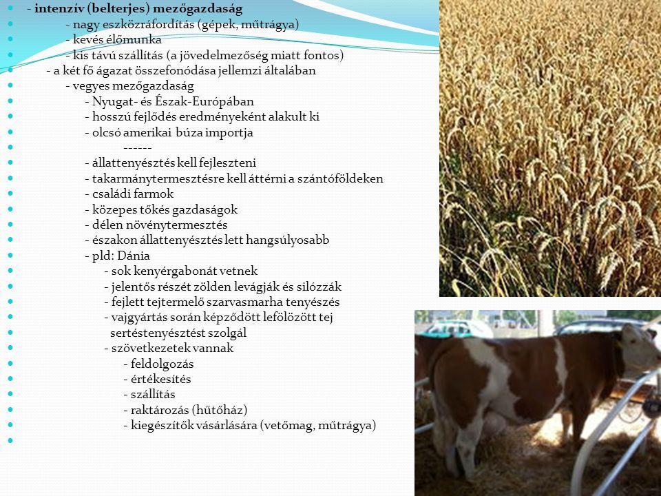 - intenzív (belterjes) mezőgazdaság - nagy eszközráfordítás (gépek, műtrágya) - kevés élőmunka - kis távú szállítás (a jövedelmezőség miatt fontos) -