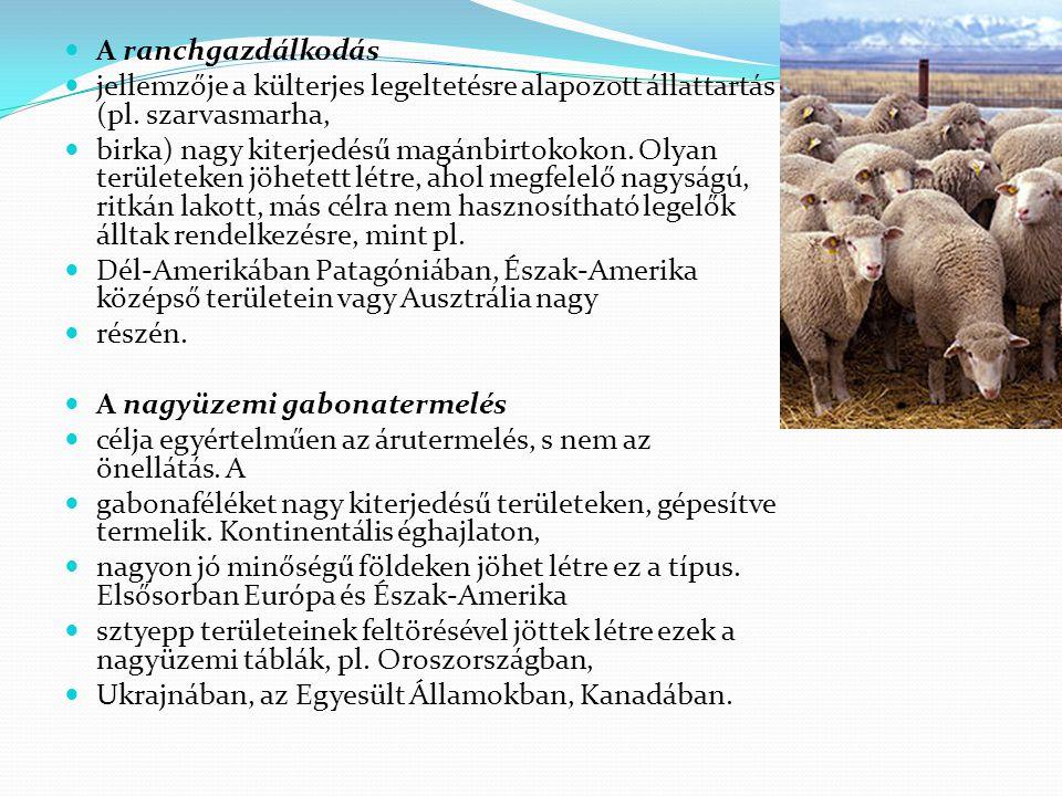 A ranchgazdálkodás jellemzője a külterjes legeltetésre alapozott állattartás (pl. szarvasmarha, birka) nagy kiterjedésű magánbirtokokon. Olyan terület