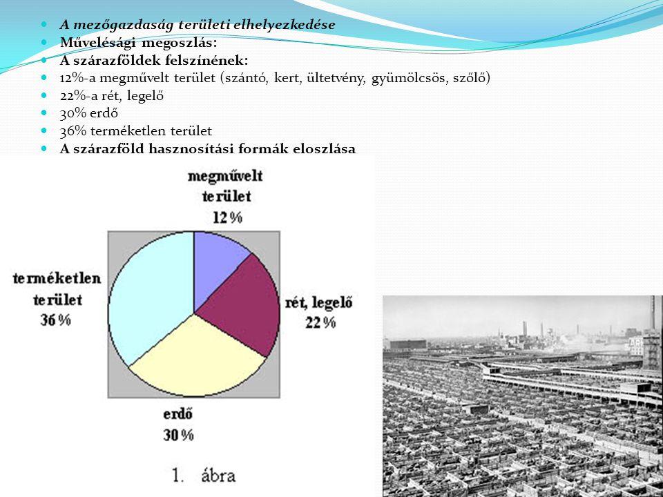 A mezőgazdaság területi elhelyezkedése Művelésági megoszlás: A szárazföldek felszínének: 12%-a megművelt terület (szántó, kert, ültetvény, gyümölcsös,