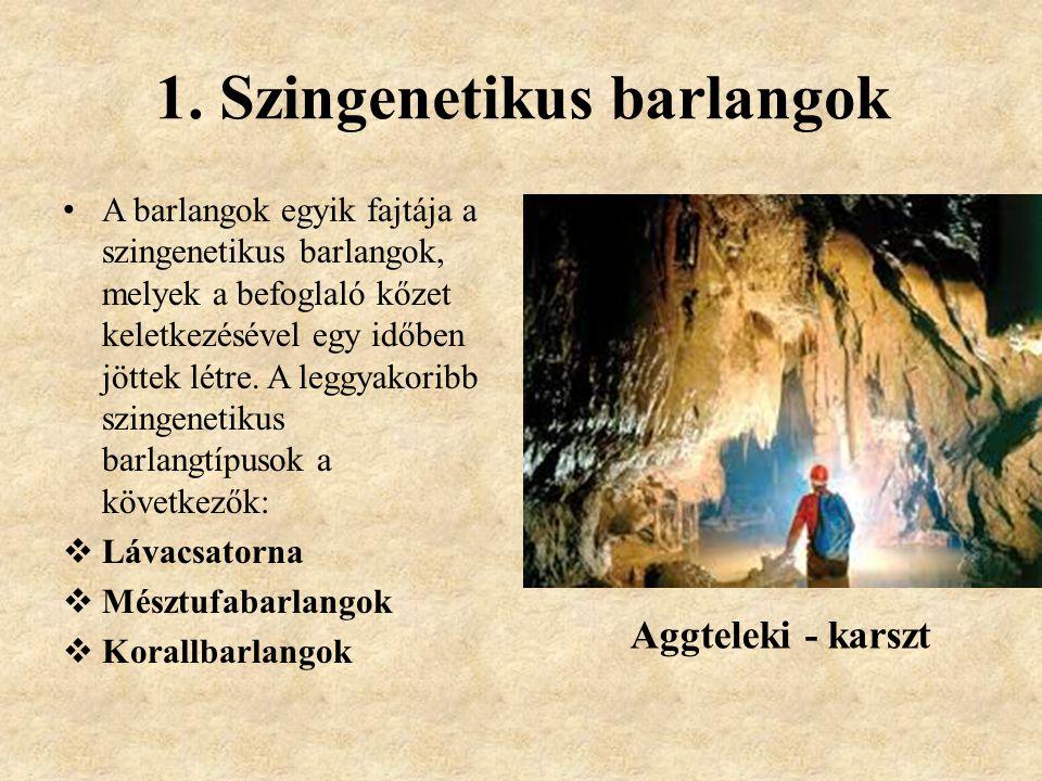 1. Szingenetikus barlangok A barlangok egyik fajtája a szingenetikus barlangok, melyek a befoglaló kőzet keletkezésével egy időben jöttek létre. A leg