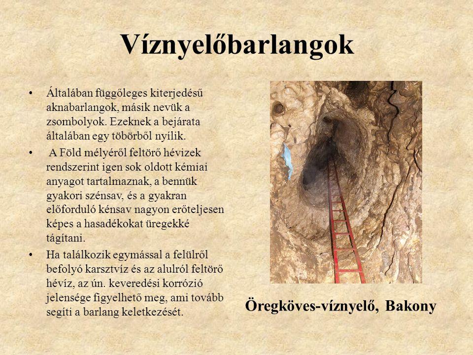 Víznyelőbarlangok Általában függőleges kiterjedésű aknabarlangok, másik nevük a zsombolyok.