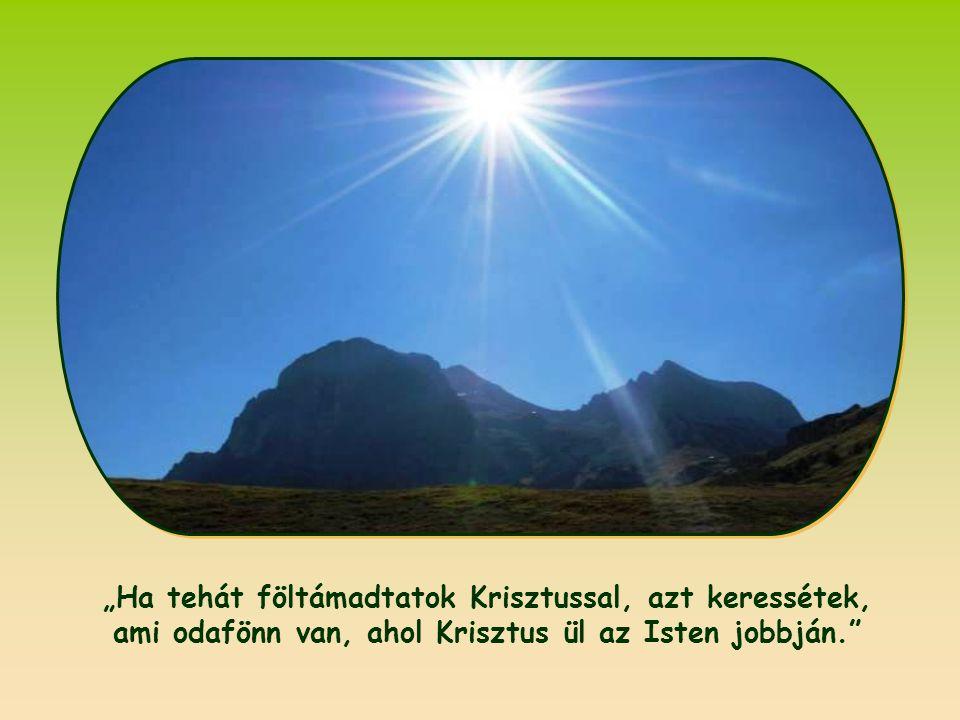 """Az """"ami odafönn van"""" ugyanis a mennyek országának törvényét jelenti, amelyet Jézus hozott a földre, és azt szeretné, ha már mostantól megvalósítanánk."""