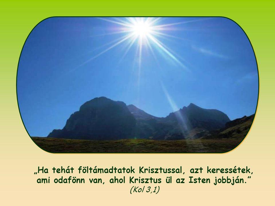 """""""Ha tehát föltámadtatok Krisztussal, azt keressétek, ami odafönn van, ahol Krisztus ül az Isten jobbján. (Kol 3,1)"""