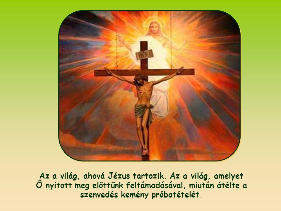 Az a világ, ahová Jézus tartozik.