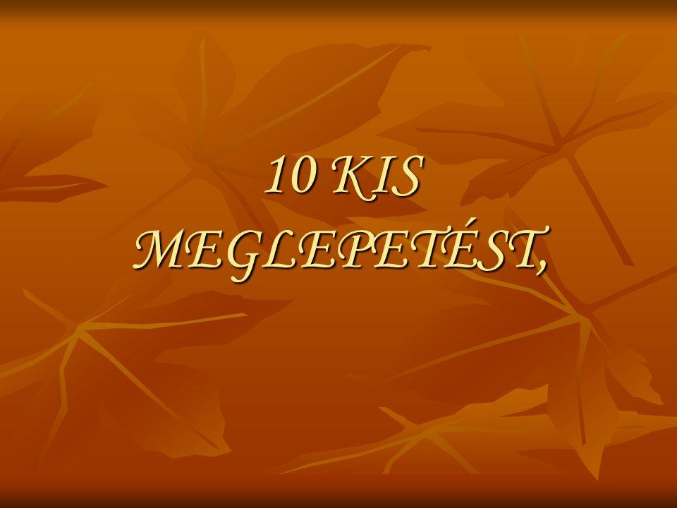 10 KIS MEGLEPETÉST,