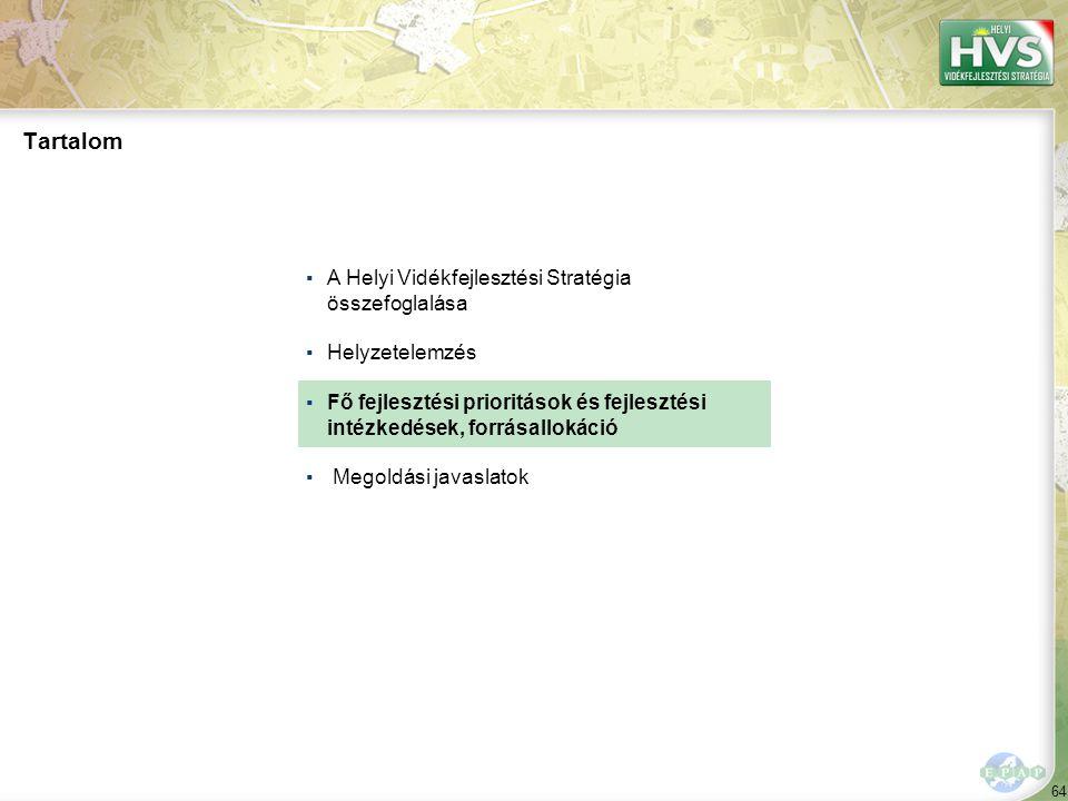 64 Tartalom ▪A Helyi Vidékfejlesztési Stratégia összefoglalása ▪Helyzetelemzés ▪Fő fejlesztési prioritások és fejlesztési intézkedések, forrásallokáció ▪ Megoldási javaslatok