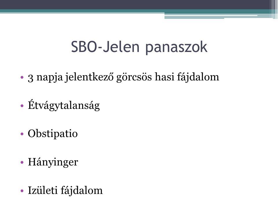 SBO-Status Kissé meglassult pszichomotorium Kétoldali alhasi nyomásérzékenység Renyhe bélhangok