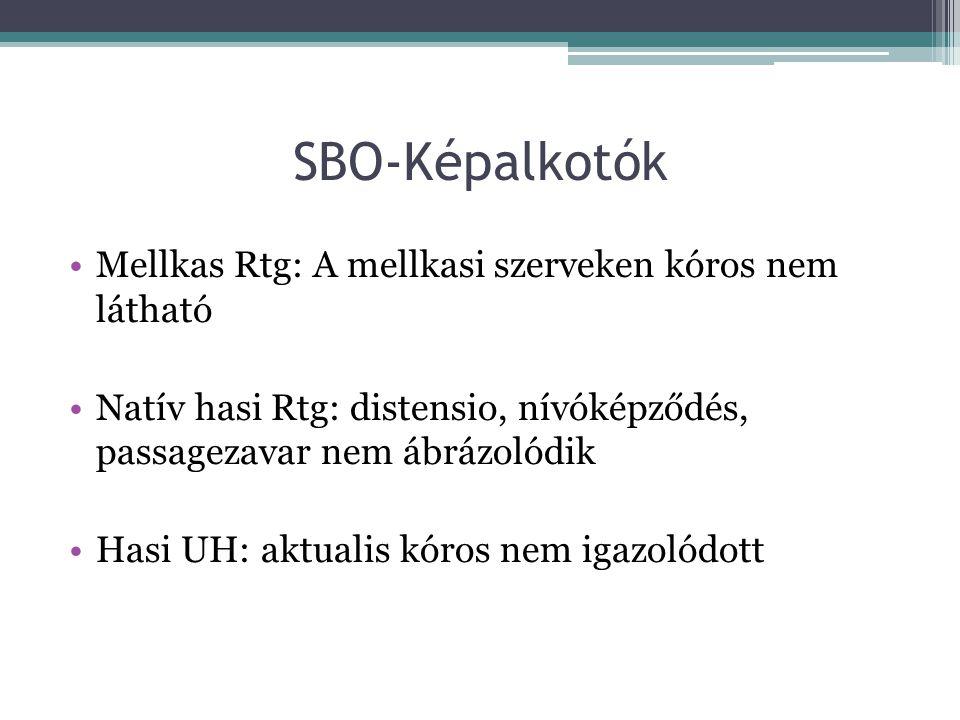 SBO-Képalkotók Mellkas Rtg: A mellkasi szerveken kóros nem látható Natív hasi Rtg: distensio, nívóképződés, passagezavar nem ábrázolódik Hasi UH: aktu