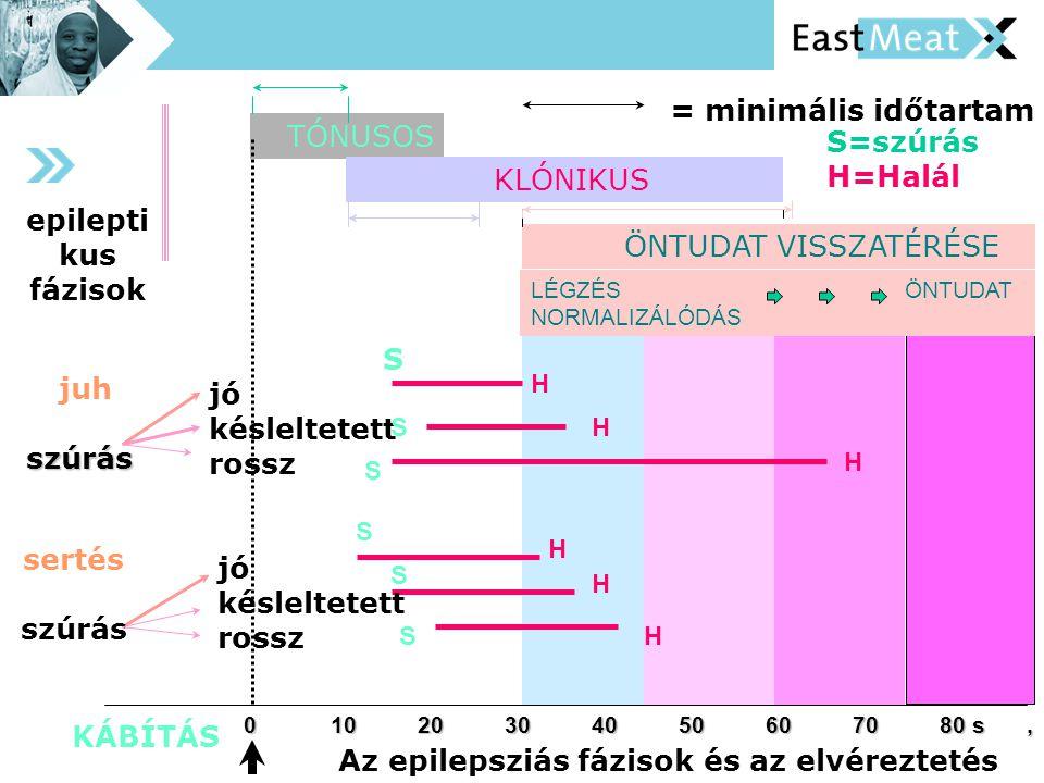 Az epilepsziás fázisok és az elvéreztetés 01020304050607080 s, ÖNTUDAT VISSZATÉRÉSE TÓNUSOS KLÓNIKUS LÉGZÉS ÖNTUDAT NORMALIZÁLÓDÁS KÁBÍTÁS epilepti kus fázisok juhszúrás sertés szúrás jó késleltetett rossz jó késleltetett rossz S H H H H H H S S S S S = minimális időtartam S=szúrás H=Halál