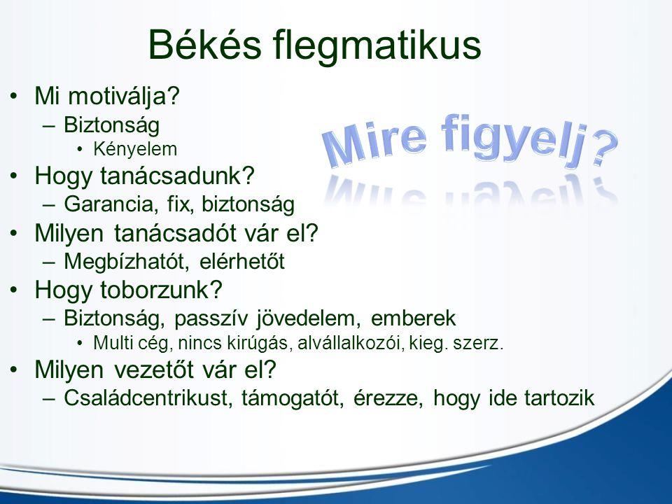 Békés flegmatikus Mi motiválja.–B–Biztonság Kényelem Hogy tanácsadunk.