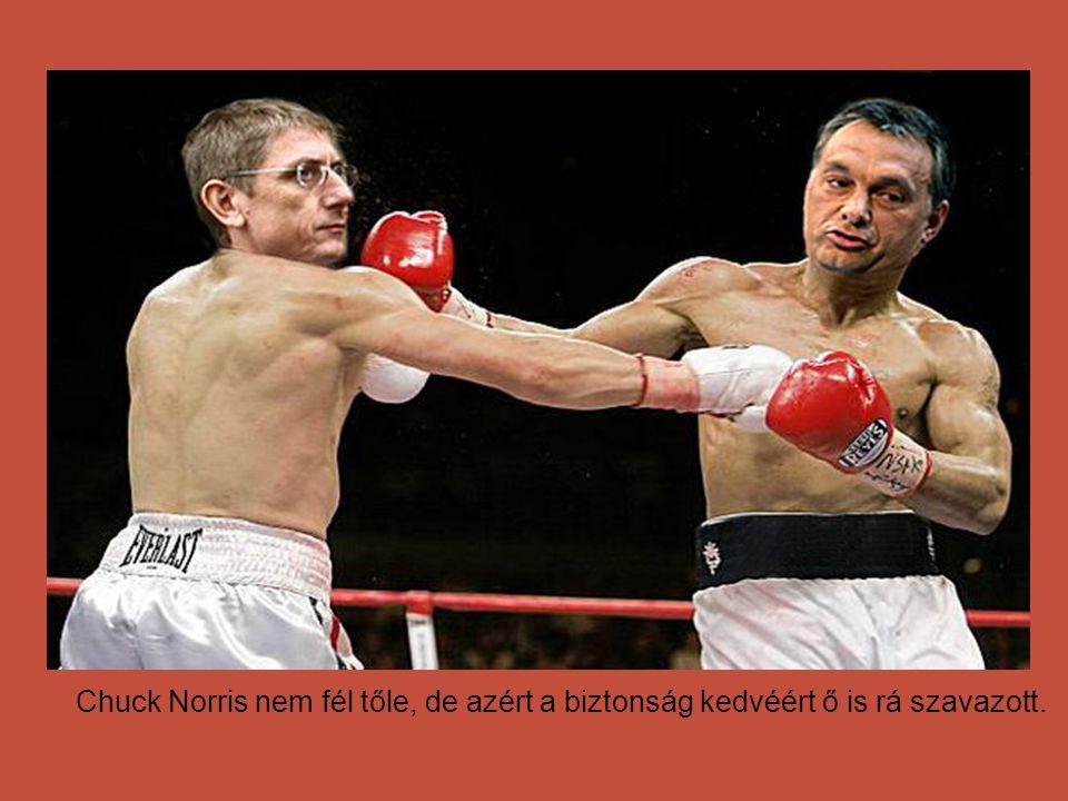 Az emberek csak agyuk 10%-át használják. A maradék 90%-ot Orbán Viktor használja helyettünk!