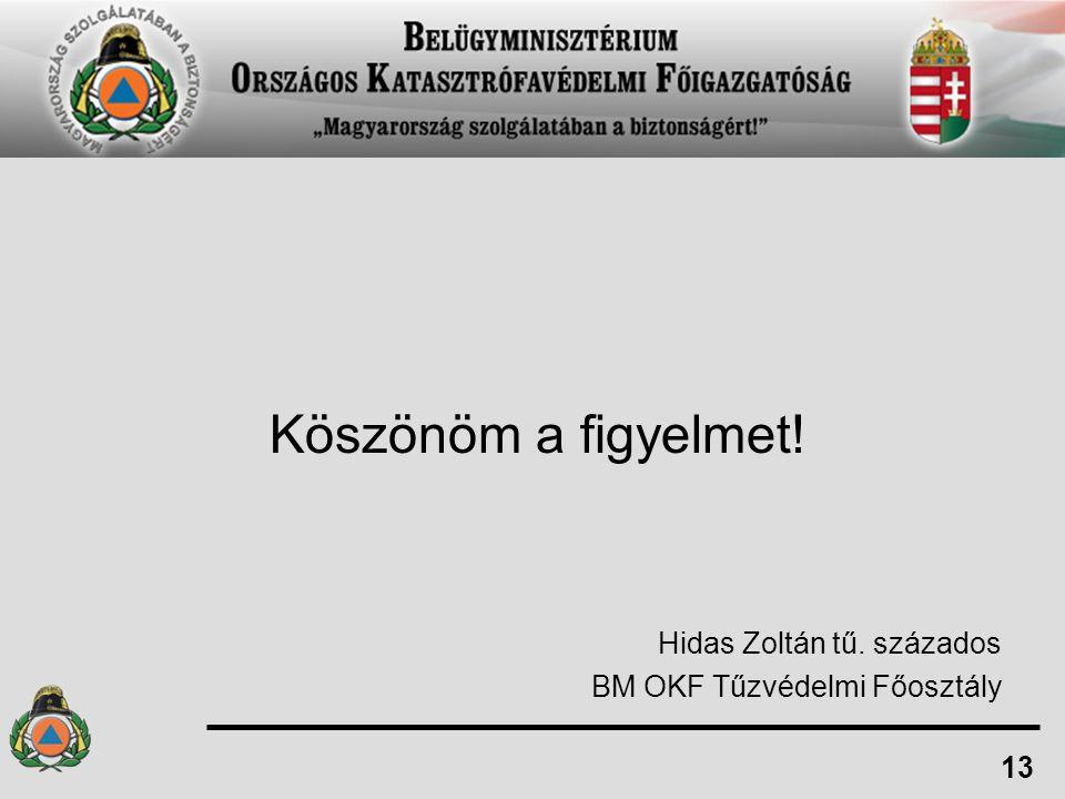 Köszönöm a figyelmet! Hidas Zoltán tű. százados BM OKF Tűzvédelmi Főosztály 13