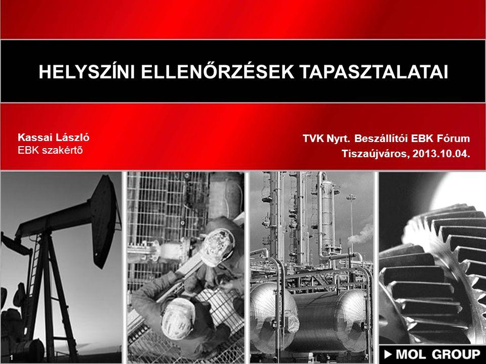 1 HELYSZÍNI ELLENŐRZÉSEK TAPASZTALATAI Kassai László EBK szakértő TVK Nyrt. Beszállítói EBK Fórum Tiszaújváros, 2013.10.04.
