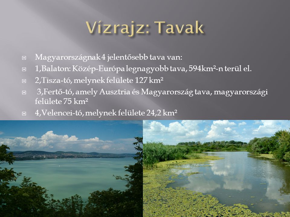  Magyarországnak 4 jelentősebb tava van:  1,Balaton: Közép-Európa legnagyobb tava, 594km²-n terül el.  2,Tisza-tó, melynek felülete 127 km²  3,Fer