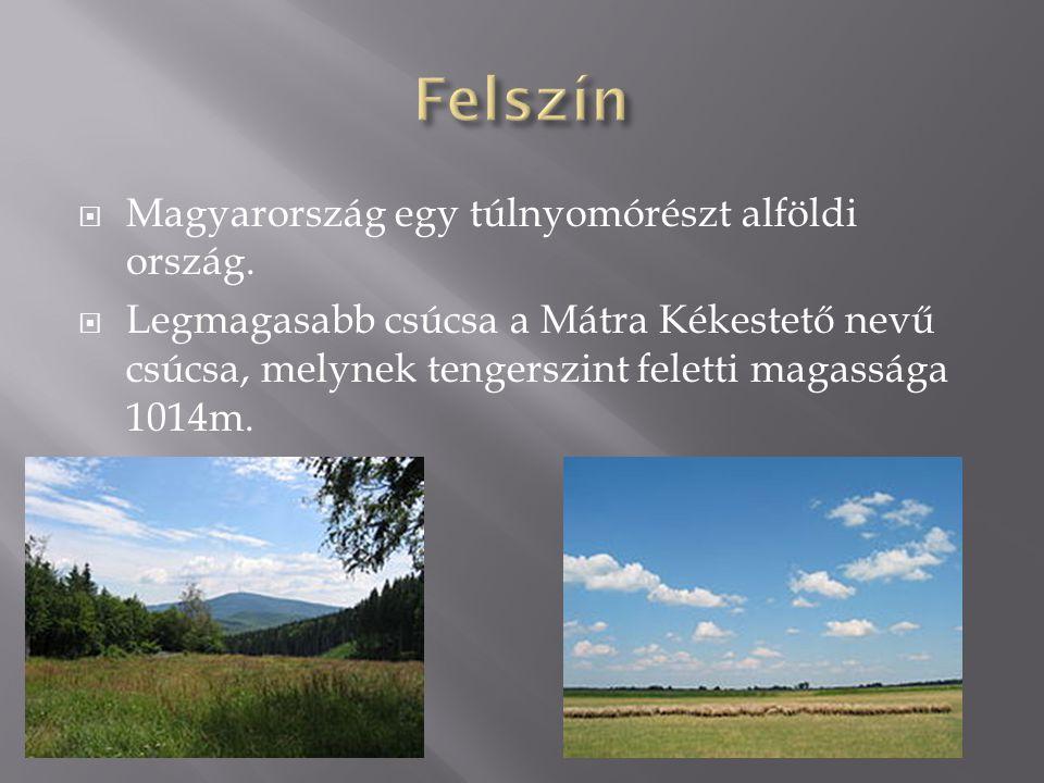  Magyarország egy túlnyomórészt alföldi ország.  Legmagasabb csúcsa a Mátra Kékestető nevű csúcsa, melynek tengerszint feletti magassága 1014m.