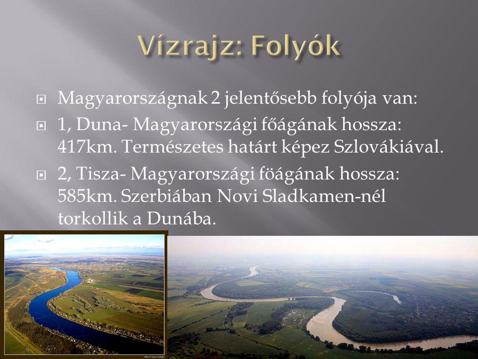  Magyarországnak 2 jelentősebb folyója van:  1, Duna- Magyarországi főágának hossza: 417km. Természetes határt képez Szlovákiával.  2, Tisza- Magya