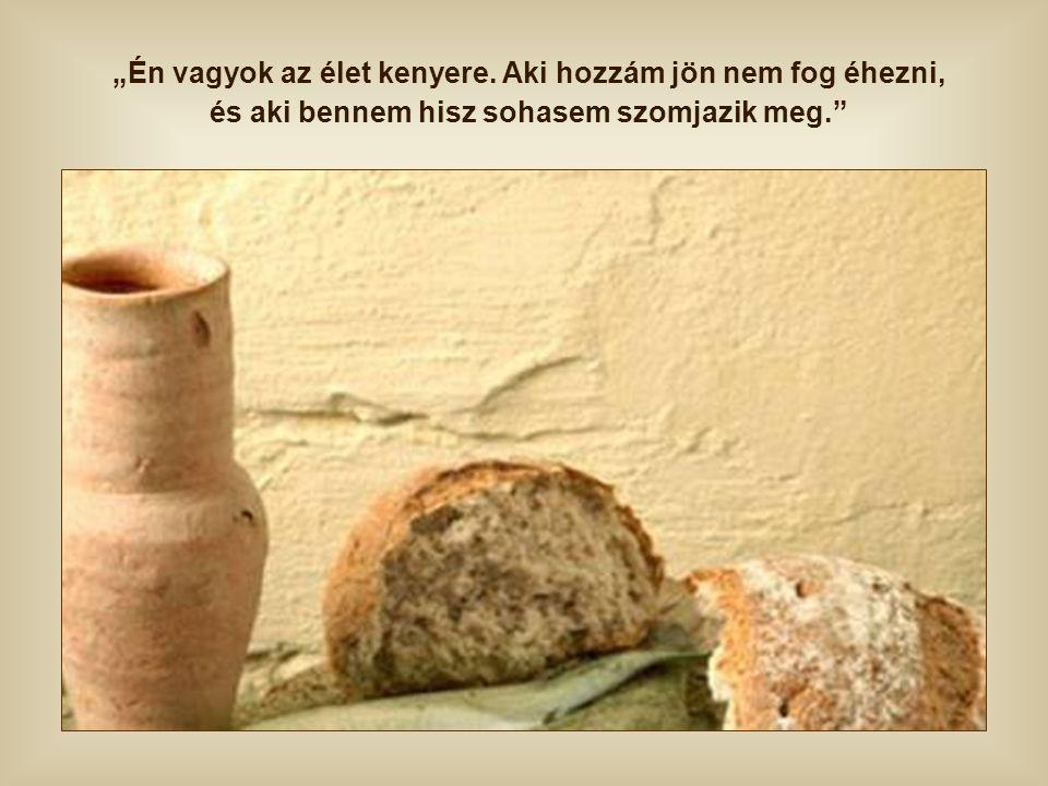 Ha ezzel a kenyérrel táplálkozunk, nem vágyunk semmilyen más eledelre. Minden szeretet és igazság utáni vágyunkat kielégíti az, aki maga a Szeretet, a