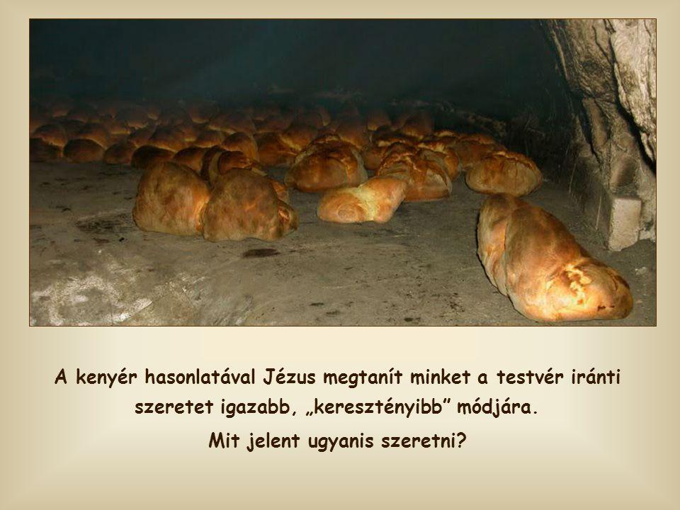 """""""Én vagyok az élet kenyere. Aki hozzám jön nem fog éhezni, és aki bennem hisz sohasem szomjazik meg."""""""