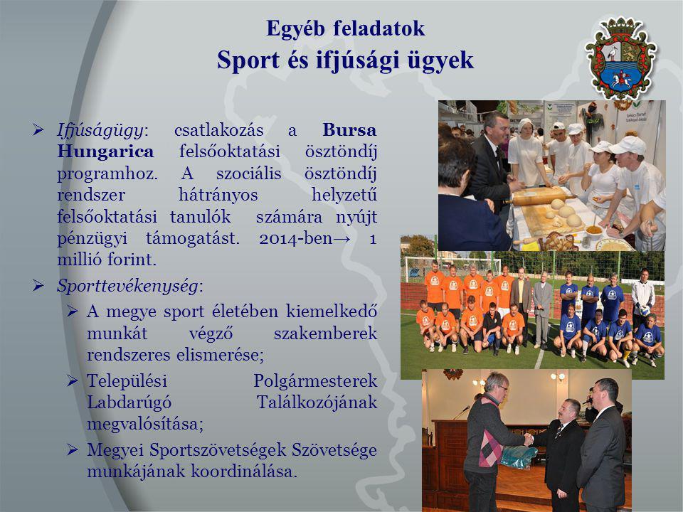 Egyéb feladatok Sport és ifjúsági ügyek  Ifjúságügy: csatlakozás a Bursa Hungarica felsőoktatási ösztöndíj programhoz.