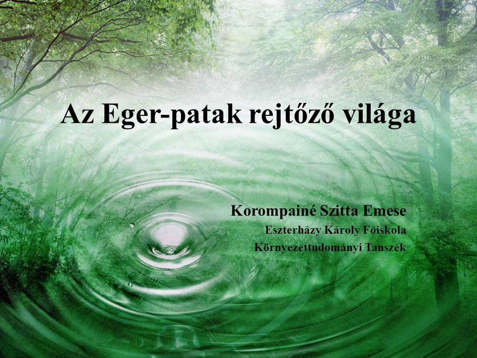 Az Eger-patak rejtőző világa Korompainé Szitta Emese Eszterházy Károly Főiskola Környezettudományi Tanszék
