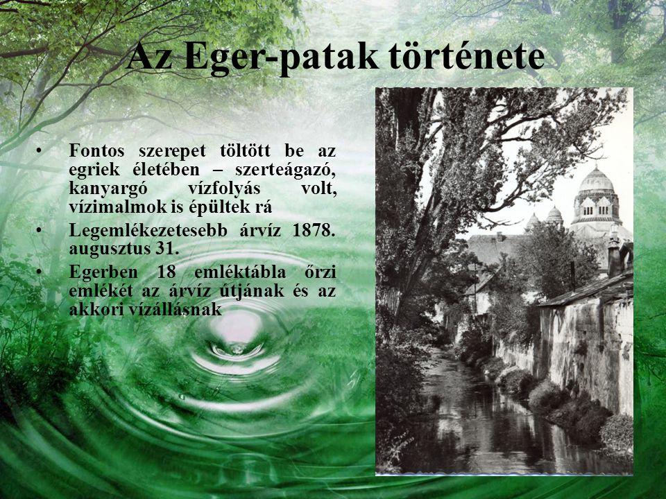 Az Eger-patak története Fontos szerepet töltött be az egriek életében – szerteágazó, kanyargó vízfolyás volt, vízimalmok is épültek rá Legemlékezetese