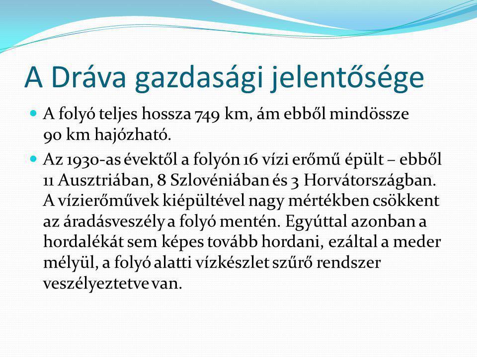 A Dráva gazdasági jelentősége A folyó teljes hossza 749 km, ám ebből mindössze 90 km hajózható. Az 1930-as évektől a folyón 16 vízi erőmű épült – ebbő