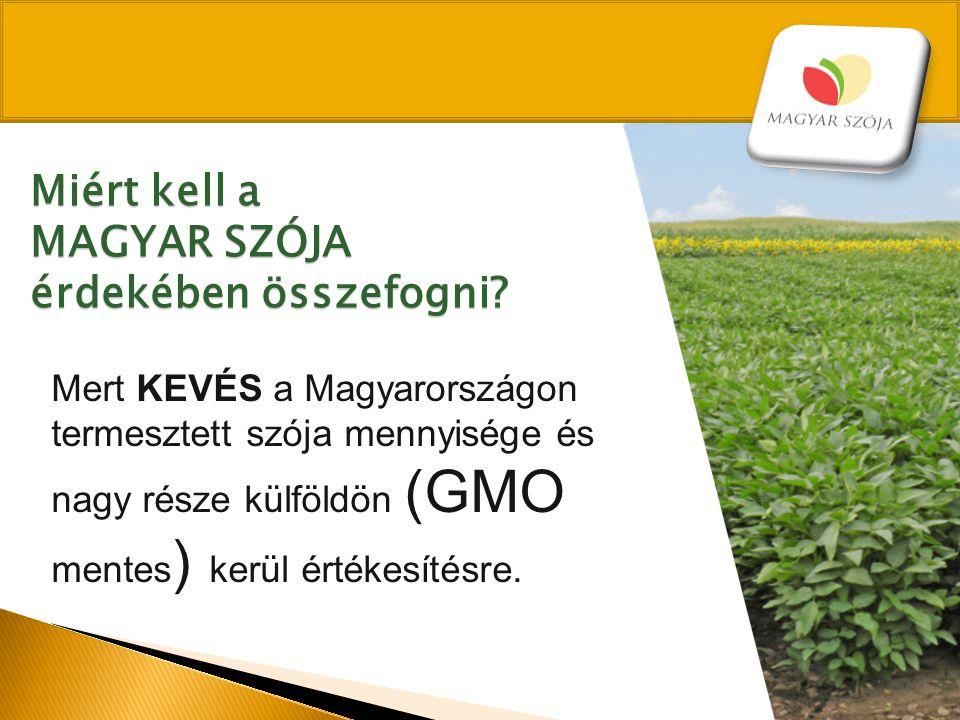Mert KEVÉS a Magyarországon termesztett szója mennyisége és nagy része külföldön (GMO mentes ) kerül értékesítésre. Miért kell a MAGYAR SZÓJA érdekébe