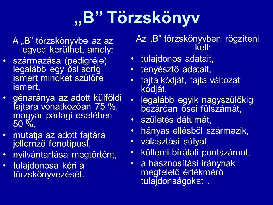 """""""B"""" Törzskönyv A """"B"""" törzskönyvbe az az egyed kerülhet, amely: származása (pedigréje) legalább egy ősi sorig ismert mindkét szülőre ismert, génaránya"""