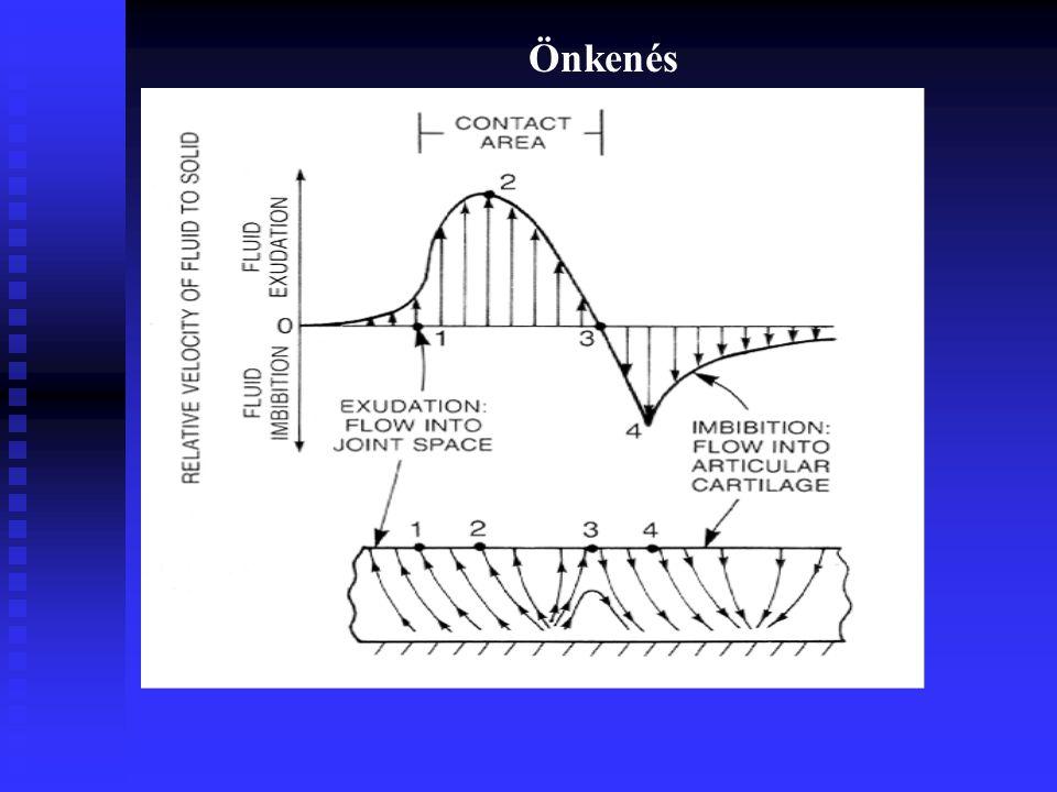 A felszínt alkotó anyag nem sima Határvonal érdesség találkozása Nyomás alatti folyadék