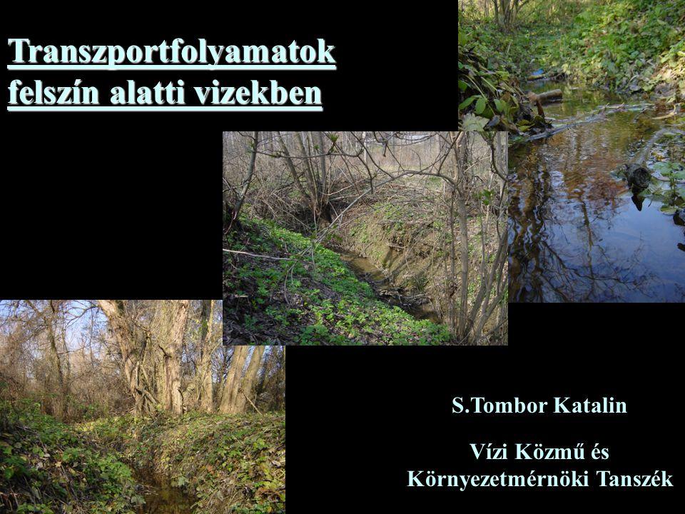 Transzportfolyamatok felszín alatti vizekben S.Tombor Katalin Vízi Közmű és Környezetmérnöki Tanszék