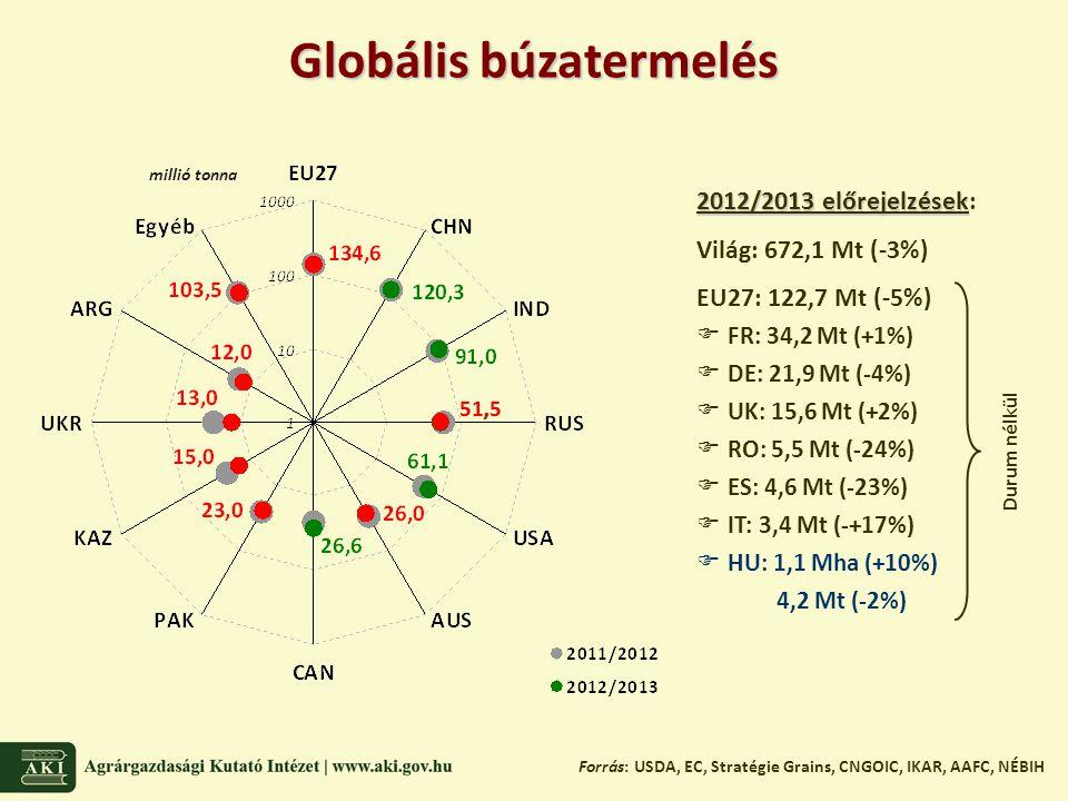 Globális búzatermelés Forrás: USDA, EC, Stratégie Grains, CNGOIC, IKAR, AAFC, NÉBIH 2012/2013 előrejelzések 2012/2013 előrejelzések: Világ: 672,1 Mt (-3%) EU27: 122,7 Mt (-5%)  FR: 34,2 Mt (+1%)  DE: 21,9 Mt (-4%)  UK: 15,6 Mt (+2%)  RO: 5,5 Mt (-24%)  ES: 4,6 Mt (-23%)  IT: 3,4 Mt (-+17%)  HU: 1,1 Mha (+10%) 4,2 Mt (-2%) Durum nélkül millió tonna 51,5