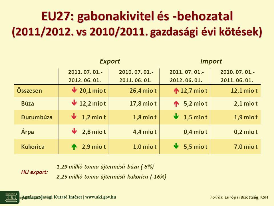 Globális kukoricatermelés Forrás: USDA, CONAB, BAGE, NÉBIH 2011/2012: 870,5 Mt (+5%) 2012/2013 előrejelzések 2012/2013 előrejelzések: Világ: 174,5 Mha (+3%) USA: 36,1 Mha (+6%) UKR: 4,4 Mha (+26%) EU27: 9,1 Mha (+4%)  HU: 1,2 Mha (+3%) 913-949 millió tonna.